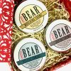 Bear Christmas Hair Gift Set
